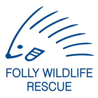 "Mrs L (TUNBRIDGE WELLS) supporting <a href=""support/folly-wildlife-rescue"">Folly Wildlife Rescue</a> matched 2 numbers and won 3 extra tickets"